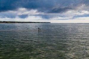 Žvejyba Kurių mariose