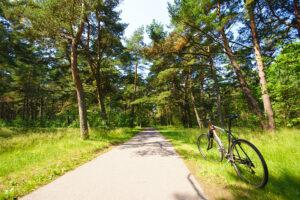 Palangos dviračių takai - Kunigiškių dviračių takas