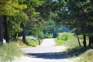 Kunigiškių dviračių takas