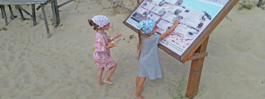Naglių gamtinio rezervato lankymas atnaujinamas