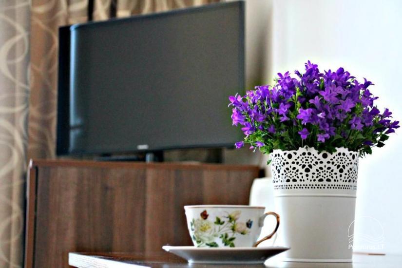 Vila Uosis - tai jaukūs, šiuolaikiškai įrengti svečių namai, atostogų apartamentai - 10