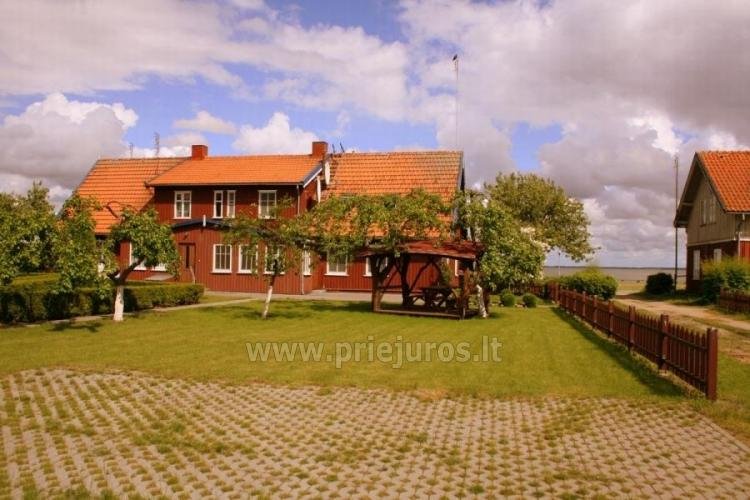Rooms and flats with the view to the lagoon for rent in Curonian Spit - 6