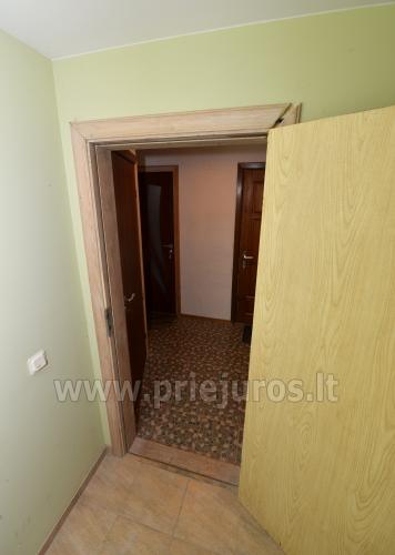 Viktorija - plaši divvietīgi dzīvokļi Nidā (vasarnīcā vai ar privātu ieeju) - 44