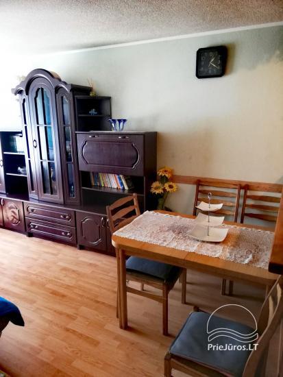 Dviejų kambarių buto nuoma pajūryje Šventojoje - 4