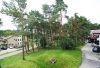 Dviejų kambarių butas Nidos centre