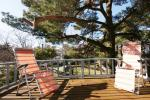 From 40 Eur Rooms and small apartments in center of Palanga - 1