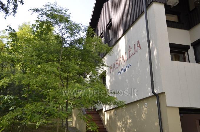 Vila Kaspalėja ieškantiems tylos ir ramybės - 2