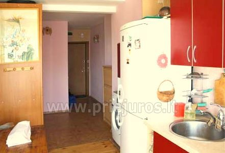1-2 rooms apartments for rent in Nida, Curonian Spit, near Baltic sea - 4