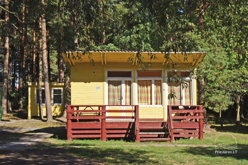 NUO 5 € / asm. - Nebrangūs nameliai Šventojoje pušyne, labai arti jūros ir centro - 4