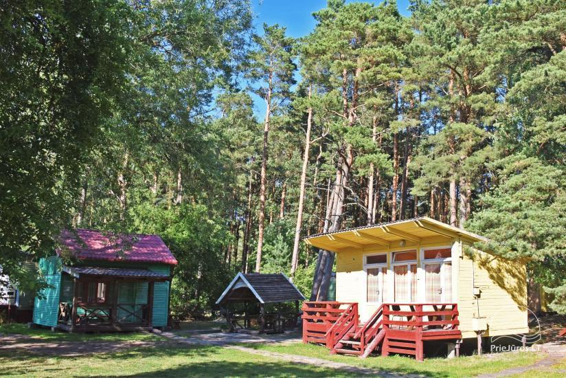 NUO 5 € / asm. - Nebrangūs nameliai Šventojoje pušyne, labai arti jūros ir centro - 5