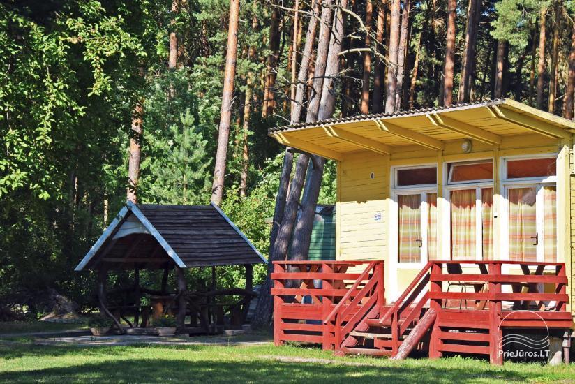 NUO 5 € / asm. - Nebrangūs nameliai Šventojoje pušyne, labai arti jūros ir centro - 1