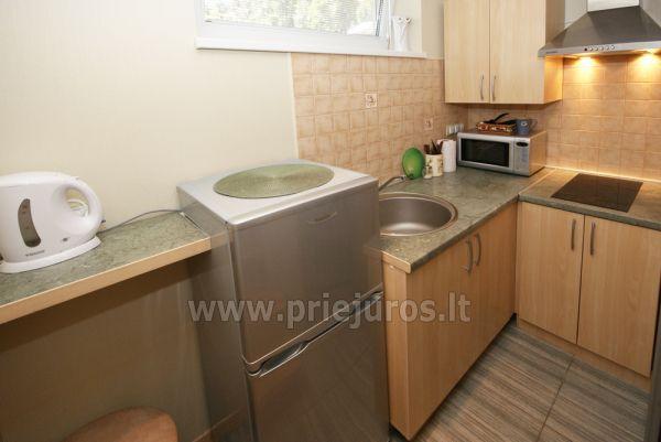 Ein-Zimmer-und Zwei-Zimmer-Wohnungen zur Miete in Nida - 11