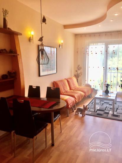 Two-bedroom Apartment Rental in Nida Saltinelis with yard, outdoor furniture - 4