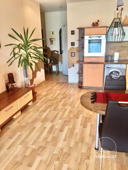Two-bedroom Apartment Rental in Nida Saltinelis with yard, outdoor furniture - 6