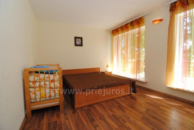 Accommodation in Palanga - Apartment, Room Rent in Palanga - 2