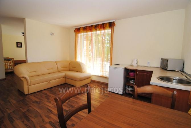 Accommodation in Palanga - Apartment, Room Rent in Palanga - 3