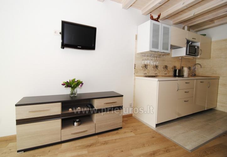 Irinos apartamentai su balkonu Nidoje - 5