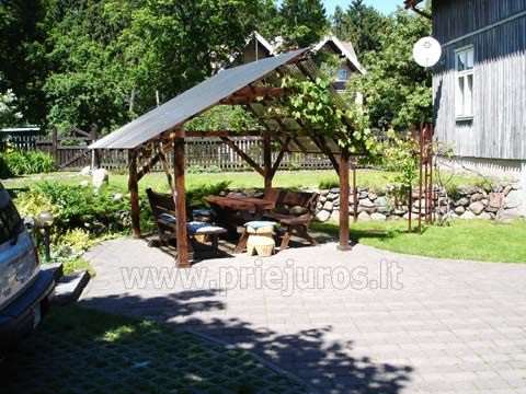 Apartment Rent in Juodkrante in Curonian Spit - 4