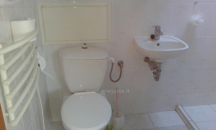 Apartments for rent in Curonian spit, in Lithuania - 10