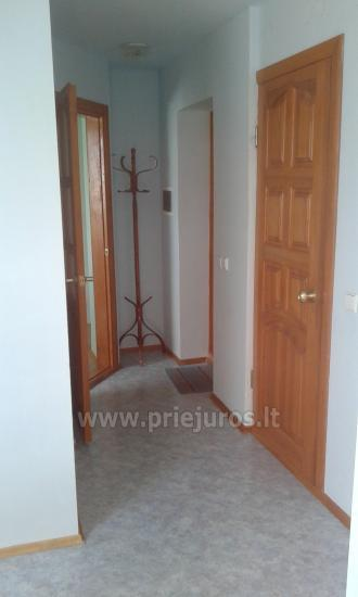 Apartments for rent in Curonian spit, in Lithuania - 9