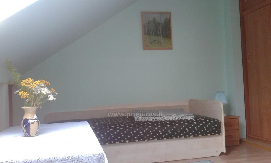 Apartments for rent in Curonian spit, in Lithuania - 8