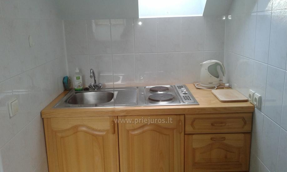 Apartments for rent in Curonian spit, in Lithuania - 6