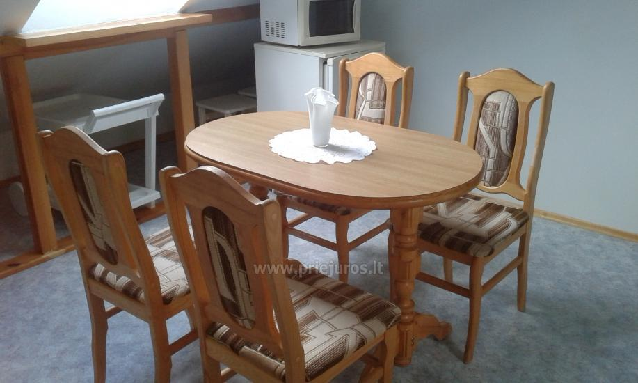 Apartments for rent in Curonian spit, in Lithuania - 1