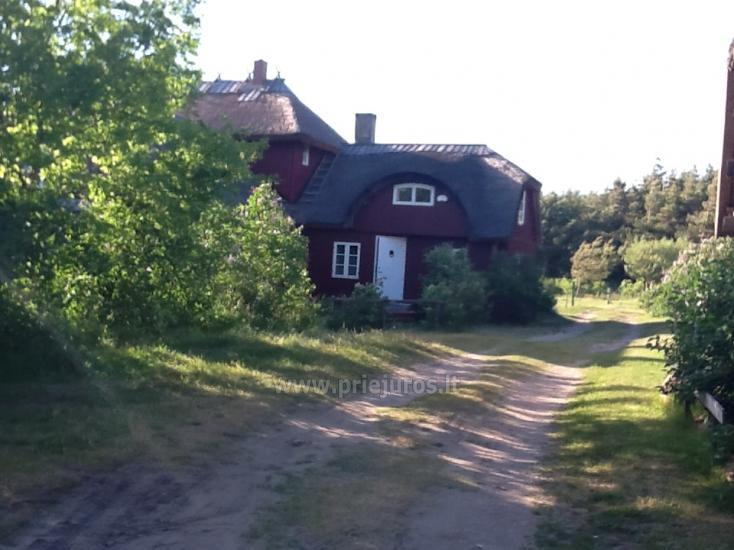 Apartment for rent in Nida, in Latvia - 9