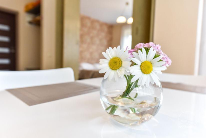 Jauni brīvdienu māja, apartamenti un numuri ar virtuvi un terasēm Palangā - villa OPTIMISTAS - 29
