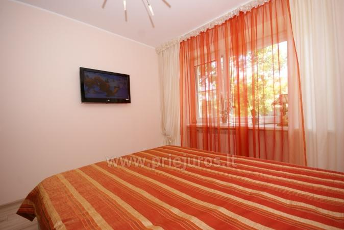 Apartment rent in Nida: two rooms apartment with a view to the lagoon - 5