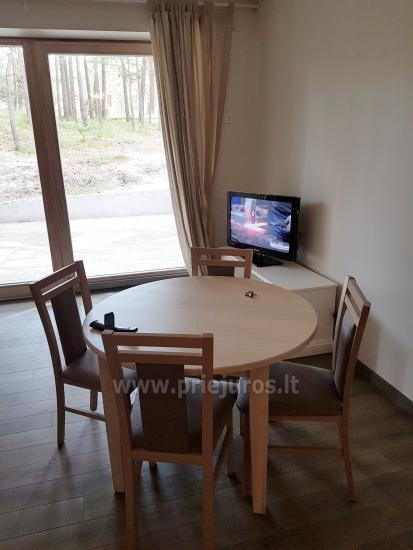 One room apartment with amazing view to the pine forest in Nida, Curonian spit, Lithuania - 5