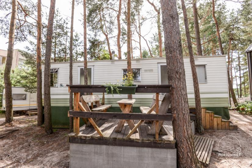 Juros 20 + - holiday houses for rent in Sventoji - 1