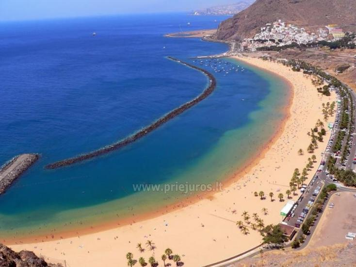 Apartments for rent in Tenerife - 1