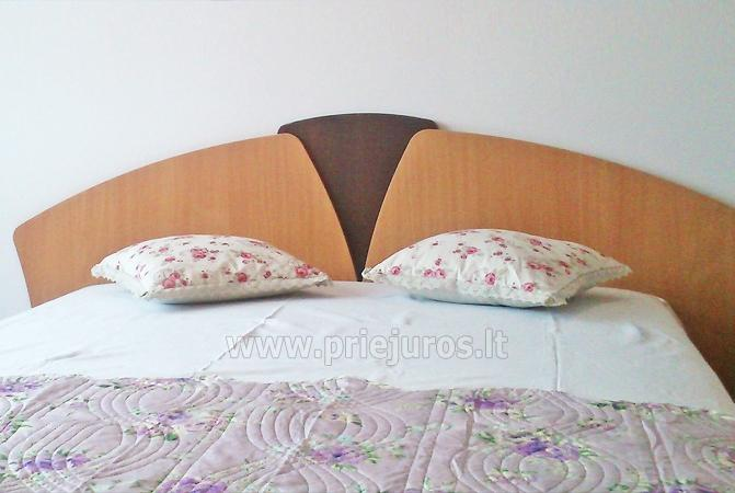 Villa Levanda Palanga, cheap room rent - 5
