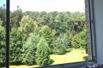 Išnuomojami keturių kambarių apartamentai Juodkrantės centre su vaizdu į Kuršių marias bei nuostabiu gamtos reginiu į Raganų kalną - 5
