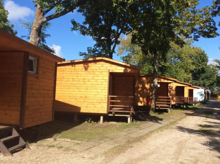 Holiday houses Žaldokynė. Just 150 meters to the sea! - 1