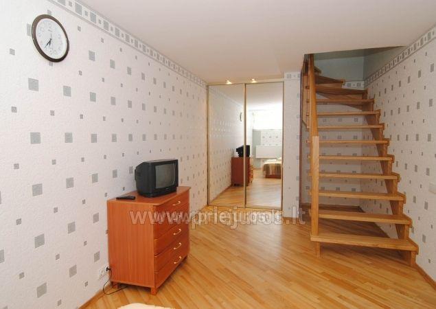 Divu istabu dzīvoklis Nida klusā vietā pie gleznainā priežu mežu - 4