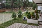 Apartment for rent in Curonian Spit, near the Baltic sea - 9