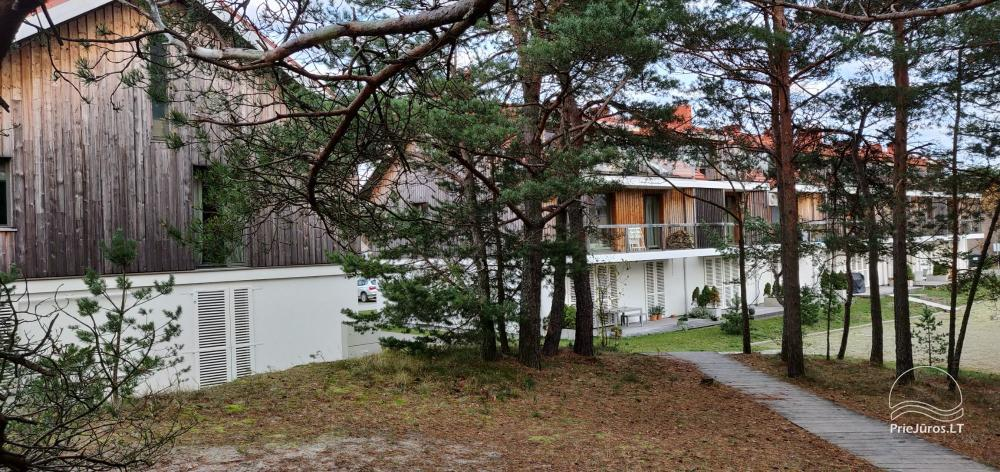Apartment for rent in Curonian Spit, near the Baltic sea - 11