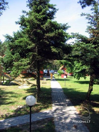 Poilsis Preiloje:  prie marių, didelė teritorija, vaikų žaidimų aikštelė, WiFi, filmuotas lietuviškas filmas Dėdė , Rokas ir Nida - 23