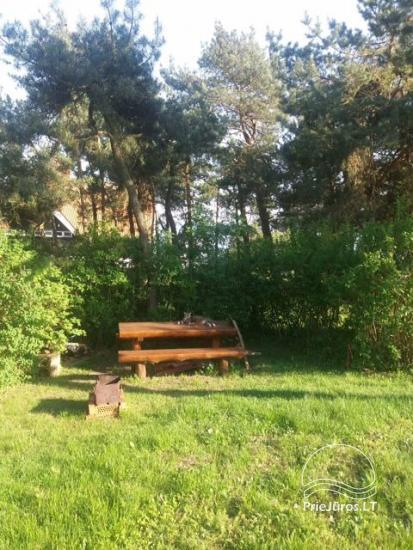 2 rooms apartment for rent in Nida, close to Curonian Lagoon - 13