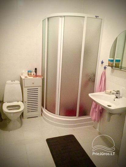 Apartamento nuoma Palangoje - 7
