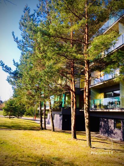 Apartamento nuoma Palangoje, Vytauto g. 15-42 - 10