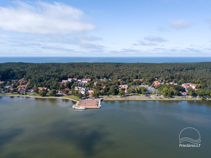 Apartment for rent near Curonian lagoon - 11