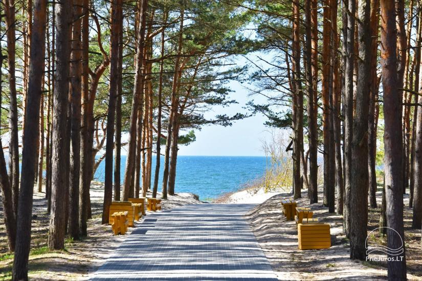 Calm rest near the sea in Kunigiskes! - 21
