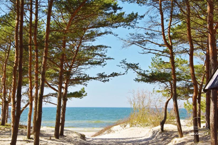 Ruhige Erholung am Meer in Kunigiskes! - 22