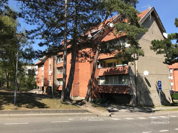 Apartamentų nuoma Nida centre ir Nida Forest