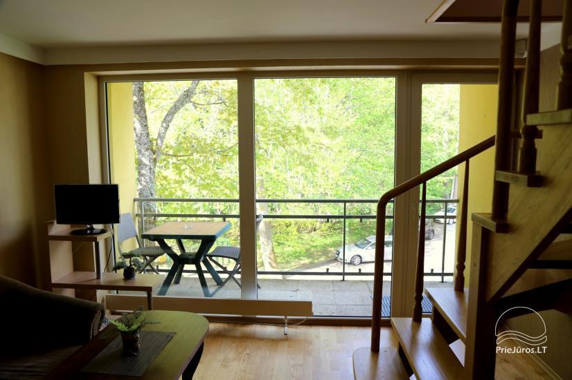 Juodkrantės apartamentai per du aukštus  Pušynas - 1