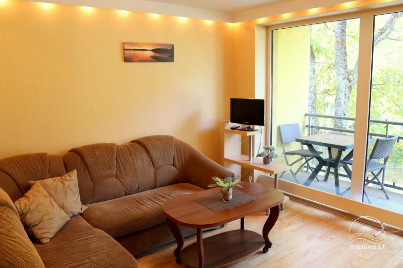Juodkrantės apartamentai per du aukštus  Pušynas - 5