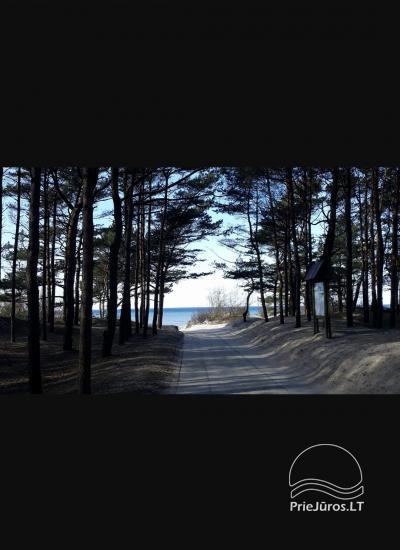 Dzīvoklis Pajūrio Vakarai Palangā, Kunigiskē. Līdz jūrai tikai 250 metri! - 19